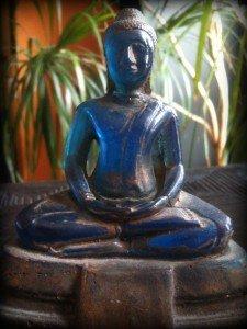 Tentative de méditation n°1 dans CHRONIQUES IMG_2956-225x300